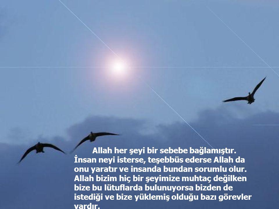Allah her şeyi bir sebebe bağlamıştır