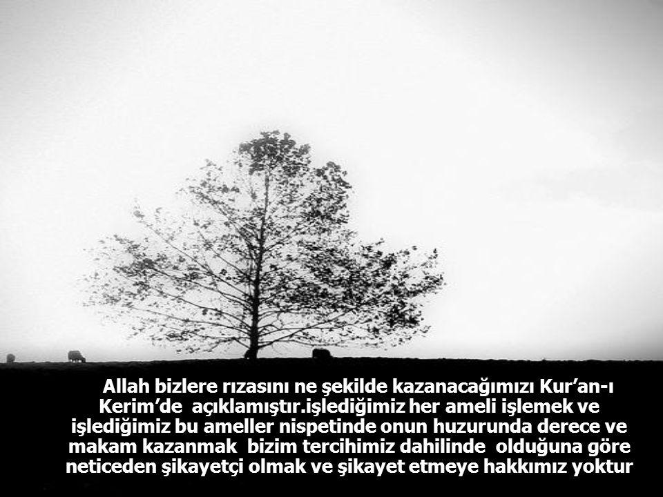 Allah bizlere rızasını ne şekilde kazanacağımızı Kur'an-ı Kerim'de açıklamıştır.işlediğimiz her ameli işlemek ve işlediğimiz bu ameller nispetinde onun huzurunda derece ve makam kazanmak bizim tercihimiz dahilinde olduğuna göre neticeden şikayetçi olmak ve şikayet etmeye hakkımız yoktur