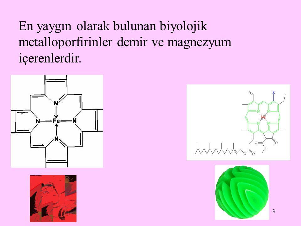 En yaygın olarak bulunan biyolojik metalloporfirinler demir ve magnezyum içerenlerdir.
