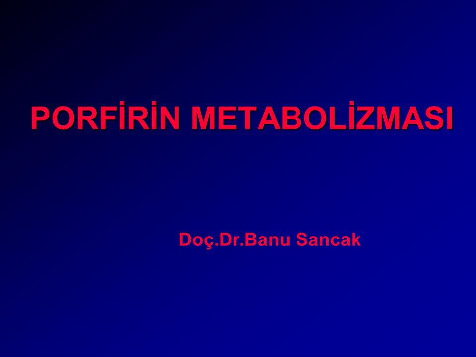 PORFİRİN METABOLİZMASI