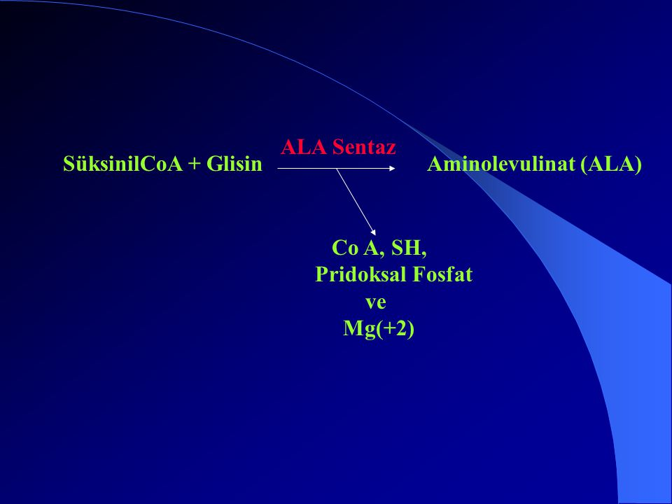 ALA Sentaz SüksinilCoA + Glisin Aminolevulinat (ALA) Co A, SH, Pridoksal Fosfat ve Mg(+2)