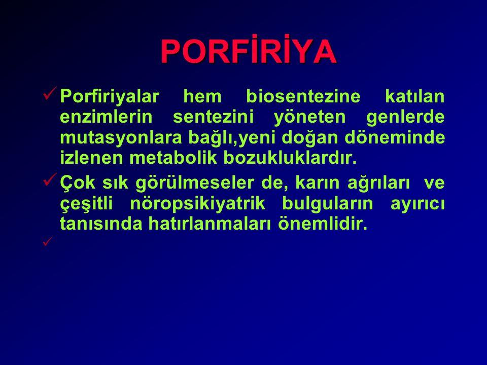 PORFİRİYA