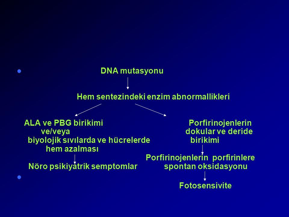 DNA mutasyonu. Hem sentezindeki enzim abnormallikleri