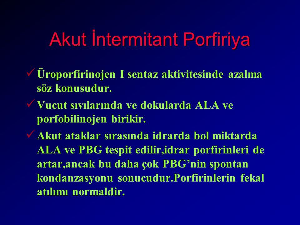 Akut İntermitant Porfiriya