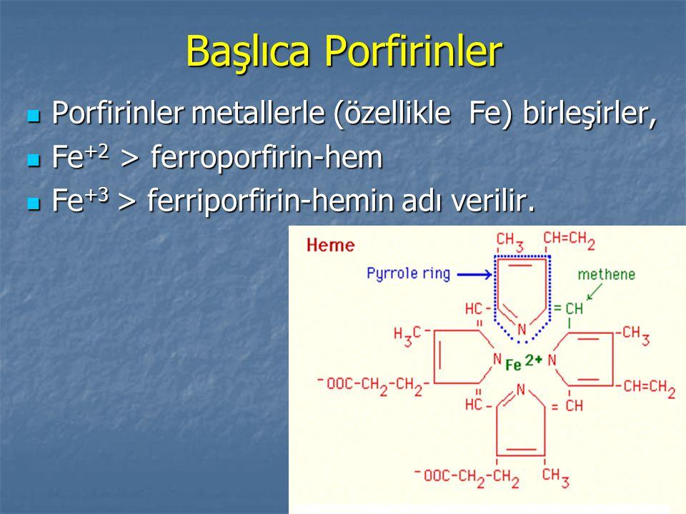 Başlıca Porfirinler Porfirinler metallerle (özellikle Fe) birleşirler,