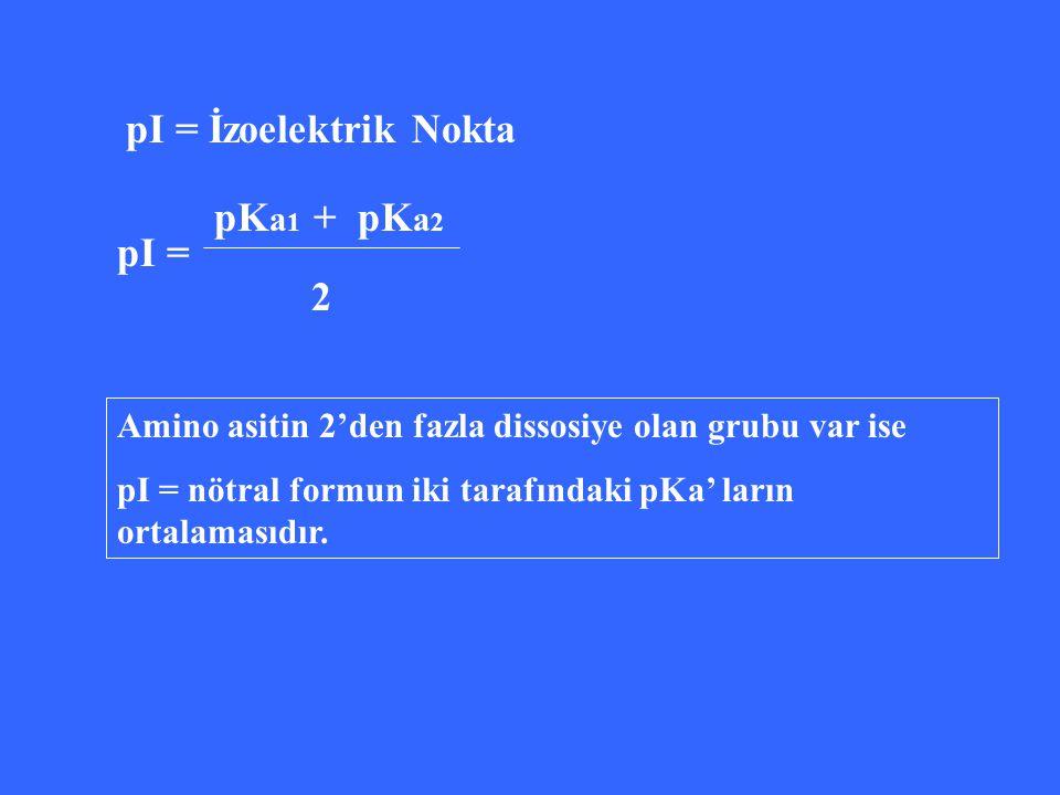 pI = İzoelektrik Nokta pKa1 + pKa2 pI = 2
