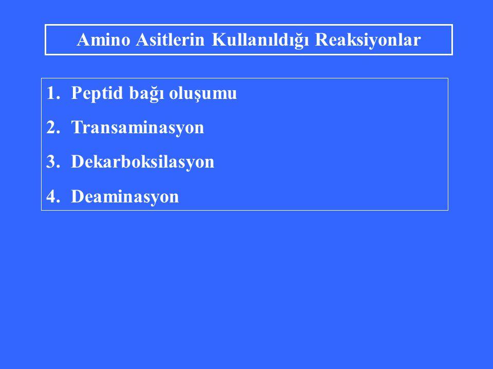 Amino Asitlerin Kullanıldığı Reaksiyonlar