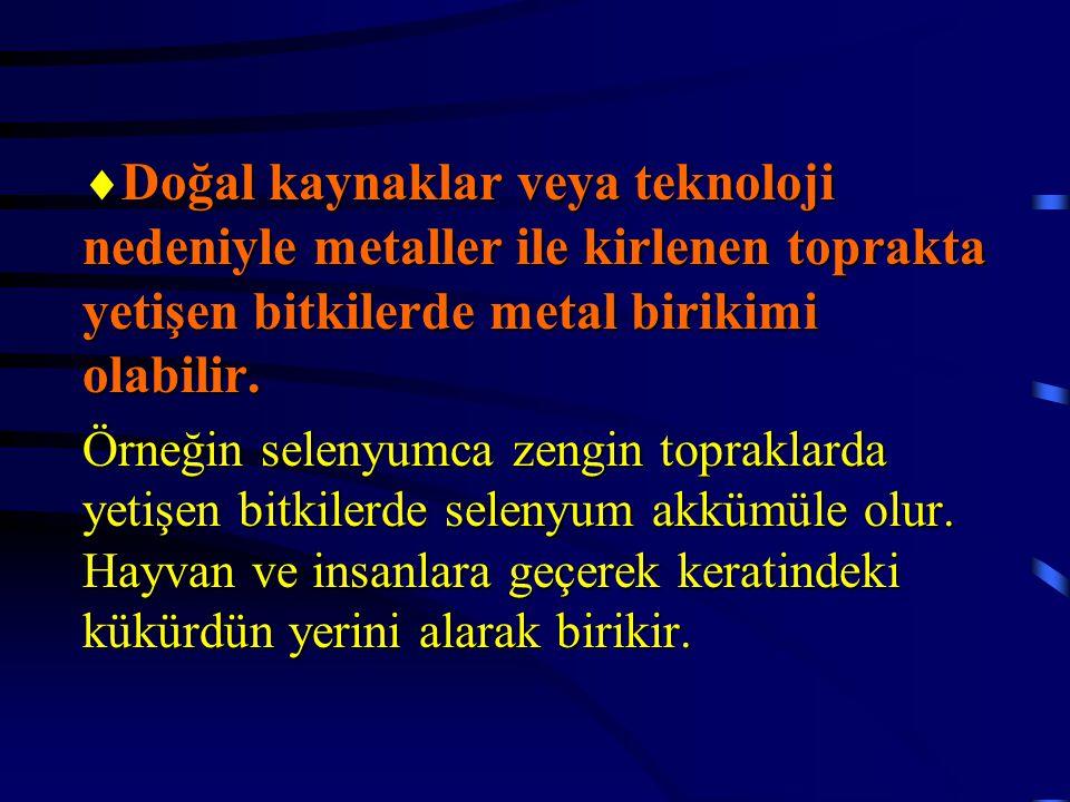 Doğal kaynaklar veya teknoloji nedeniyle metaller ile kirlenen toprakta yetişen bitkilerde metal birikimi olabilir.