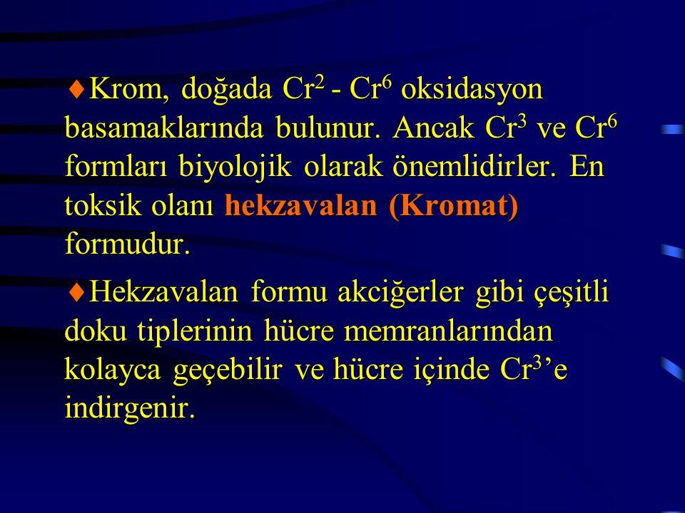 Krom, doğada Cr2 - Cr6 oksidasyon basamaklarında bulunur