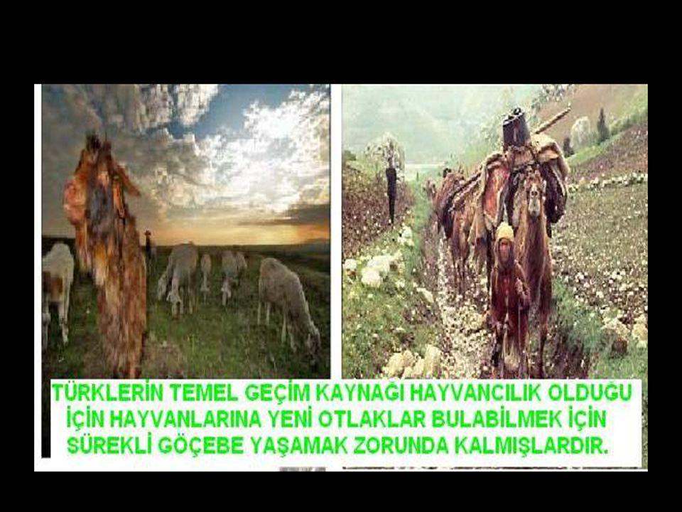 www.evdekisosyalci.com