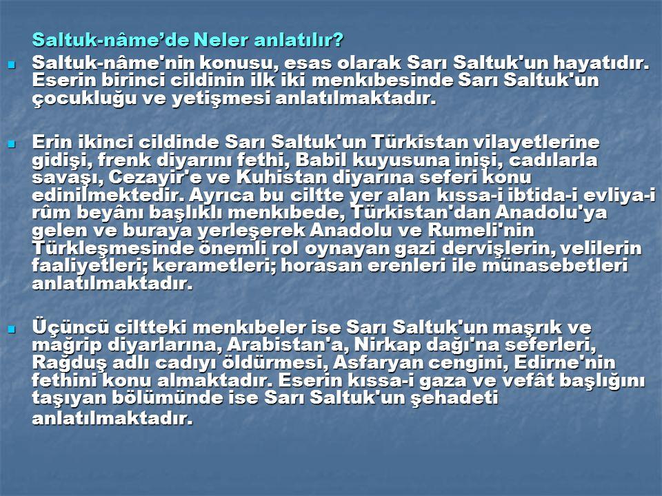 Saltuk-nâme'de Neler anlatılır
