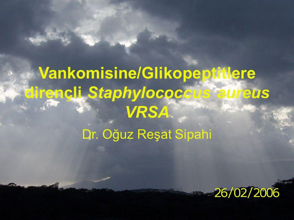 Vankomisine/Glikopeptitlere dirençli Staphylococcus aureus VRSA