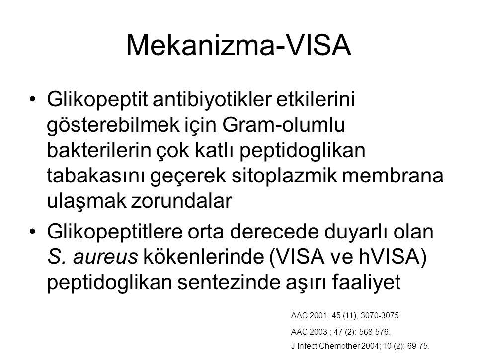 Mekanizma-VISA