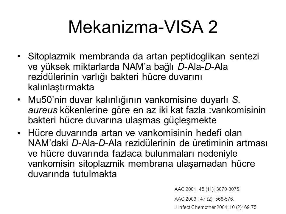 Mekanizma-VISA 2