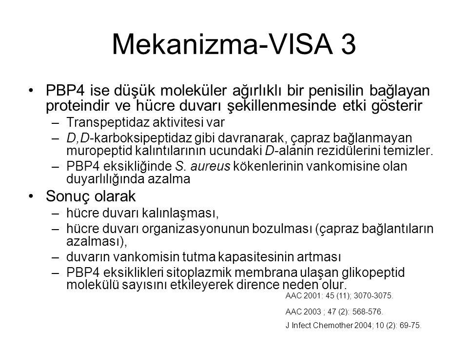 Mekanizma-VISA 3 PBP4 ise düşük moleküler ağırlıklı bir penisilin bağlayan proteindir ve hücre duvarı şekillenmesinde etki gösterir.