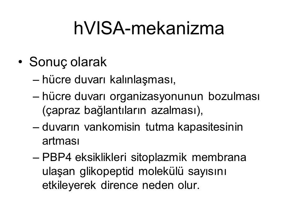hVISA-mekanizma Sonuç olarak hücre duvarı kalınlaşması,