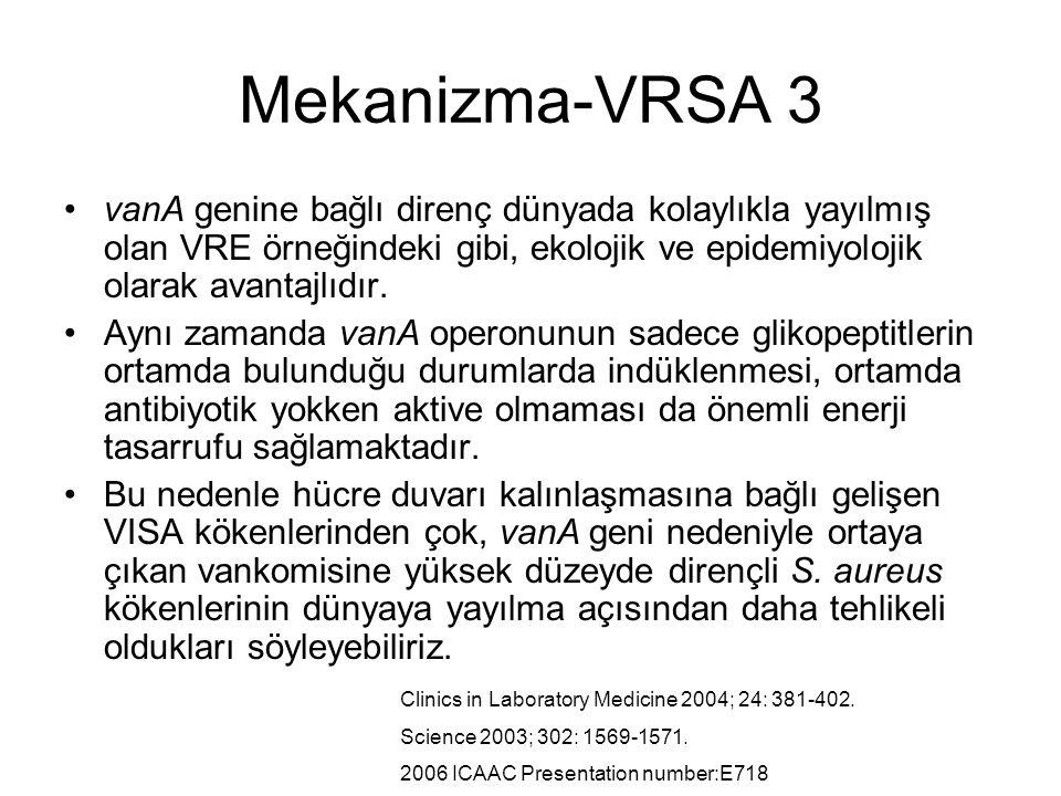 Mekanizma-VRSA 3 vanA genine bağlı direnç dünyada kolaylıkla yayılmış olan VRE örneğindeki gibi, ekolojik ve epidemiyolojik olarak avantajlıdır.