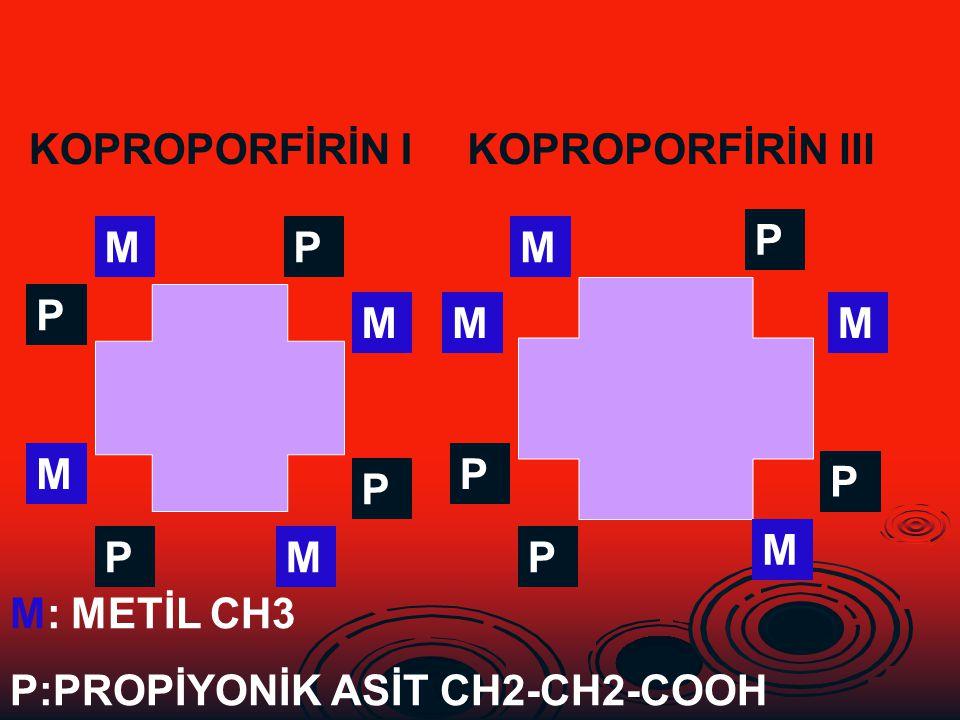 KOPROPORFİRİN I KOPROPORFİRİN III. P. M. P. M. P. M. M. M. M. P. P. P. M. P. M. P. M: METİL CH3.