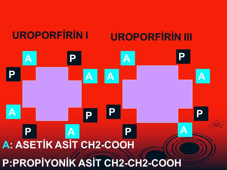 UROPORFİRİN I UROPORFİRİN III. P. A. P. A. P. A. A. A. A. P. P. P. A. P. A. P. A: ASETİK ASİT CH2-COOH.
