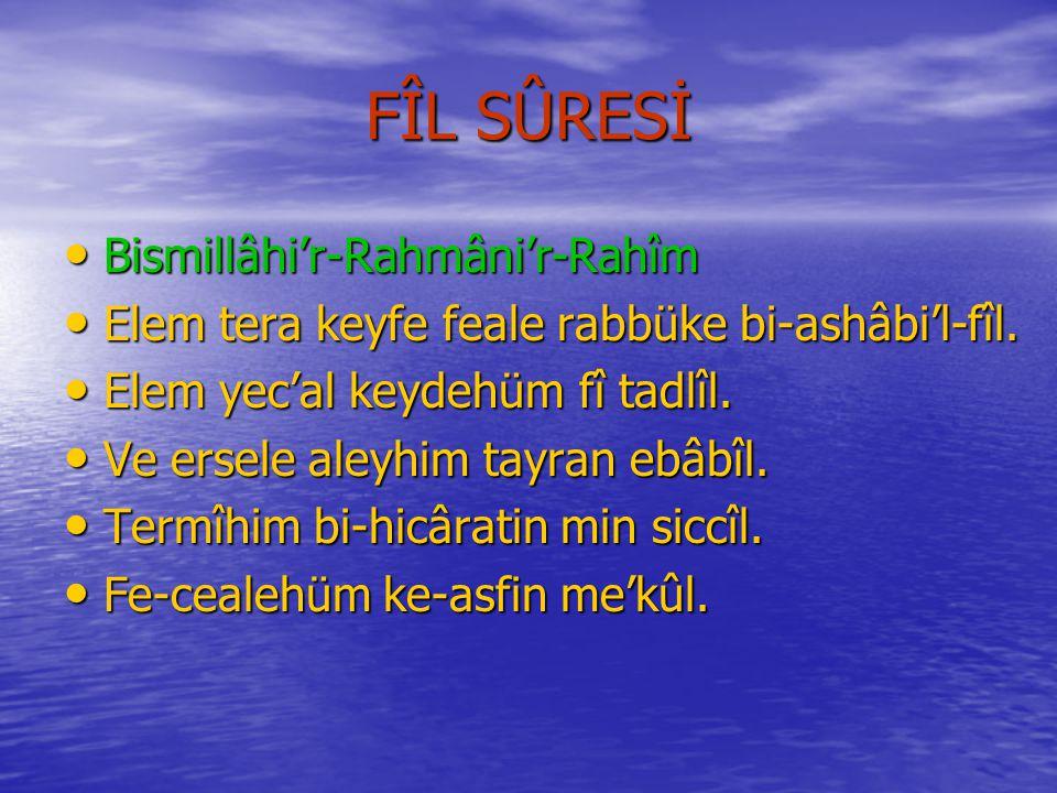 FÎL SÛRESİ Bismillâhi'r-Rahmâni'r-Rahîm