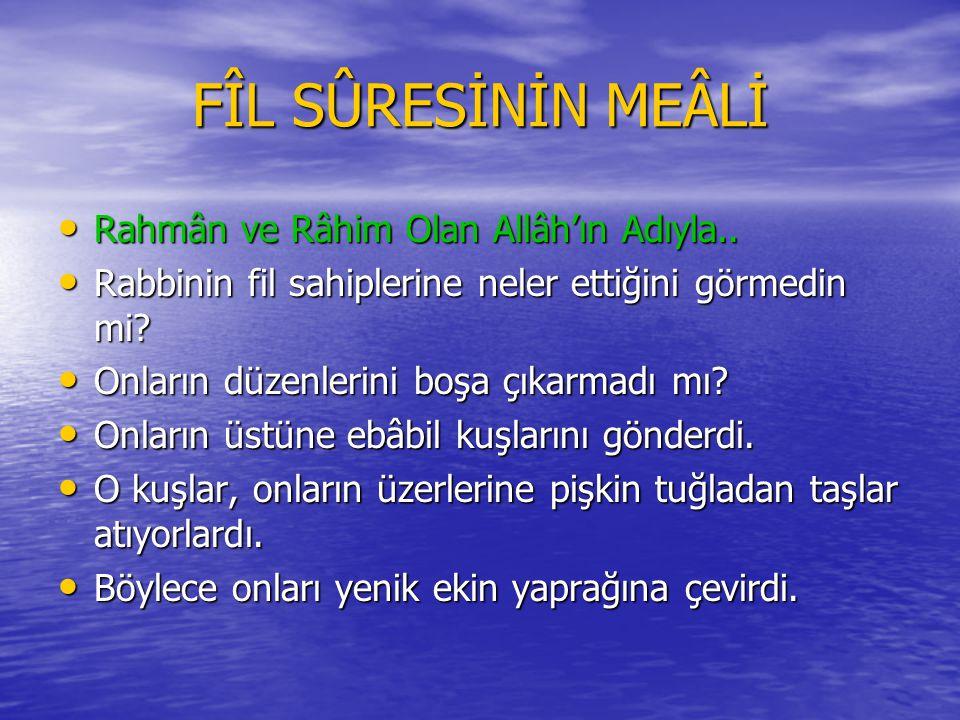 FÎL SÛRESİNİN MEÂLİ Rahmân ve Râhim Olan Allâh'ın Adıyla..