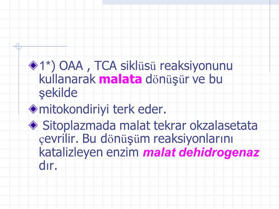 1*) OAA , TCA siklüsü reaksiyonunu kullanarak malata dönüşür ve bu şekilde