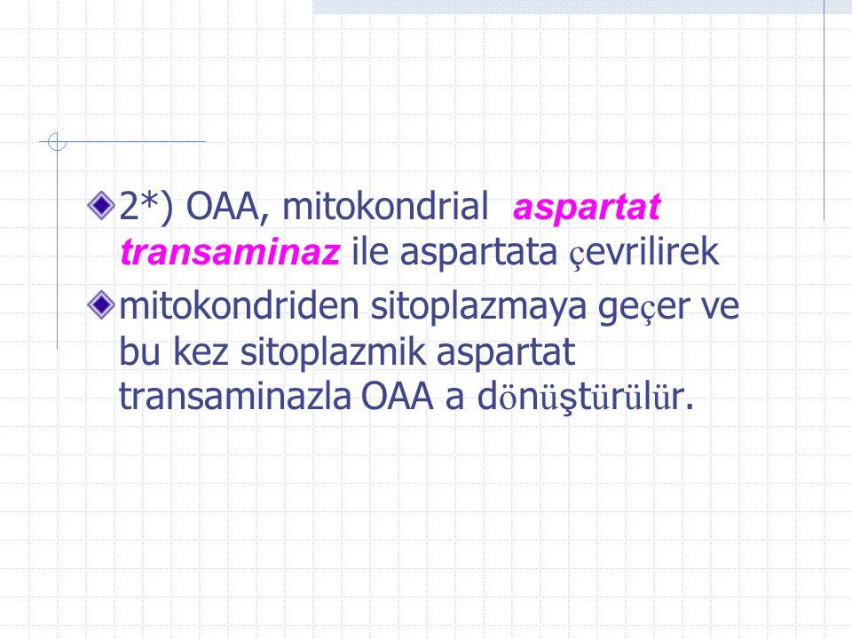 2*) OAA, mitokondrial aspartat transaminaz ile aspartata çevrilirek