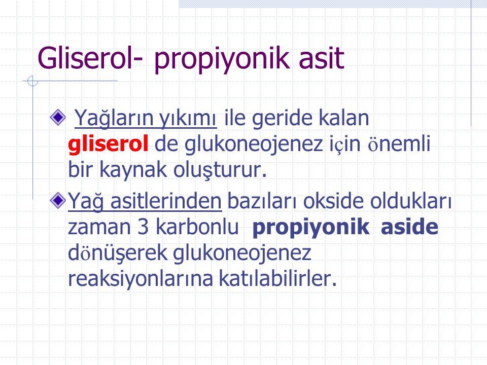 Gliserol- propiyonik asit
