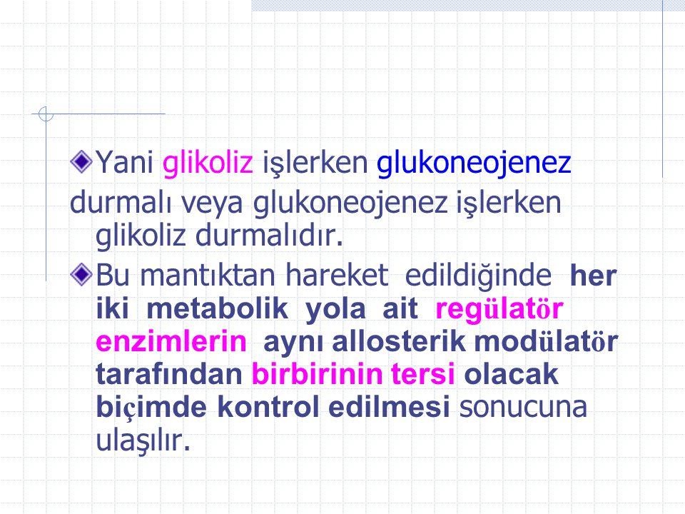 Yani glikoliz işlerken glukoneojenez