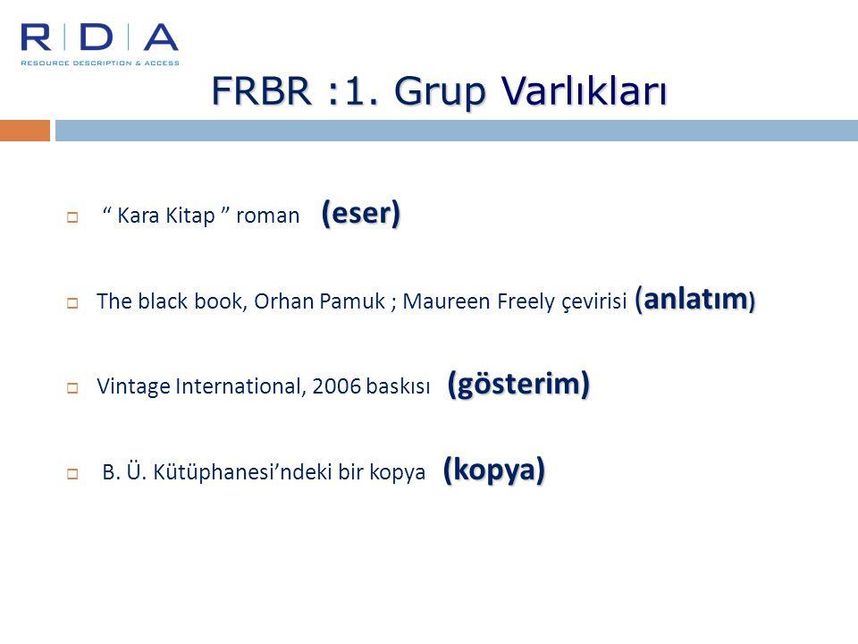 FRBR :1. Grup Varlıkları Kara Kitap roman (eser)