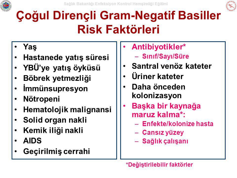 Çoğul Dirençli Gram-Negatif Basiller Risk Faktörleri