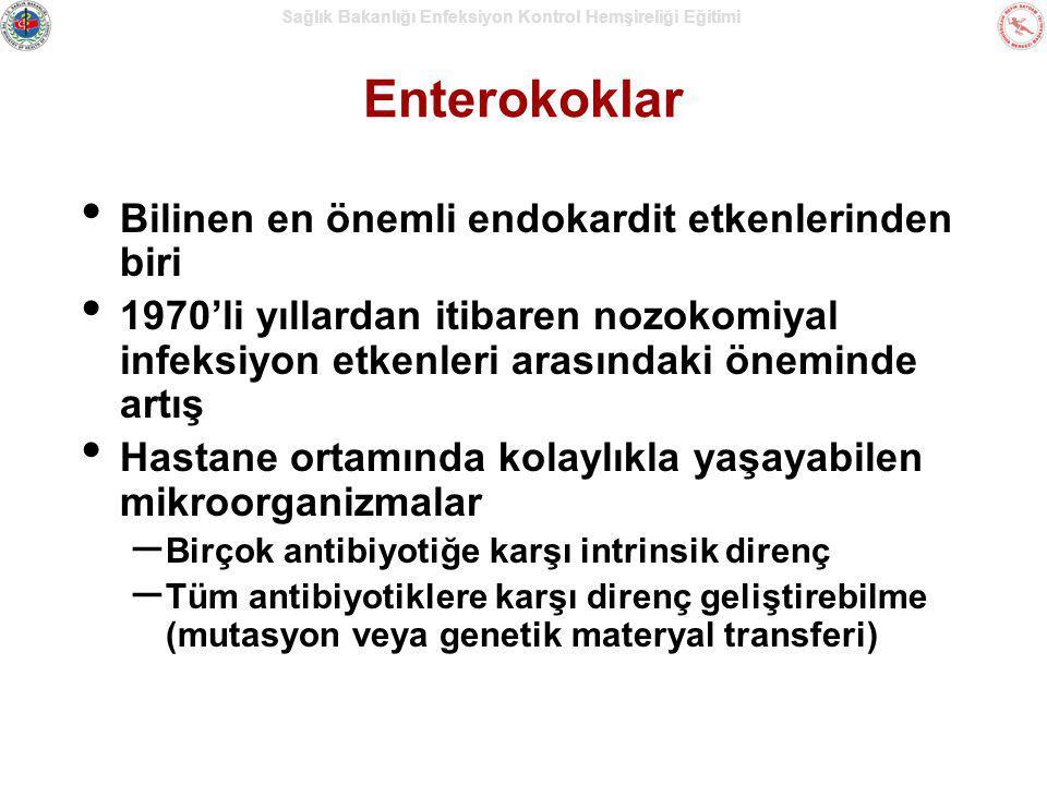 Enterokoklar Bilinen en önemli endokardit etkenlerinden biri