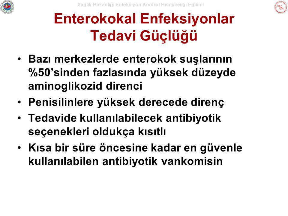 Enterokokal Enfeksiyonlar Tedavi Güçlüğü