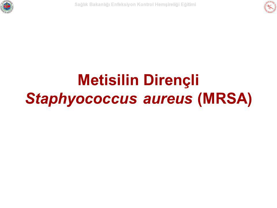 Metisilin Dirençli Staphyococcus aureus (MRSA)