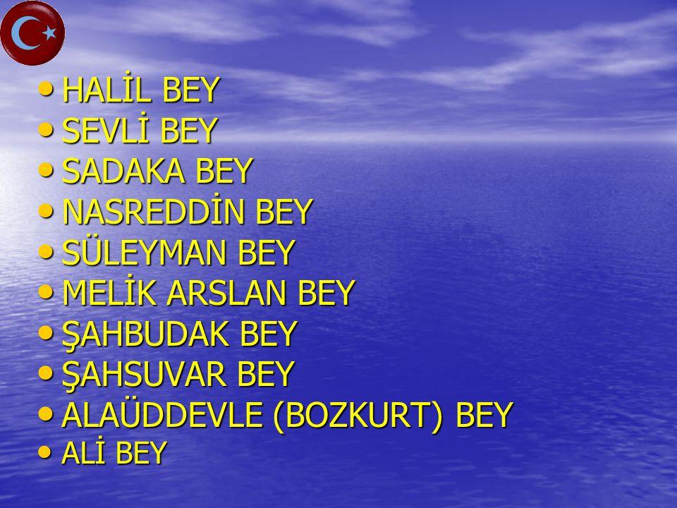 ALAÜDDEVLE (BOZKURT) BEY
