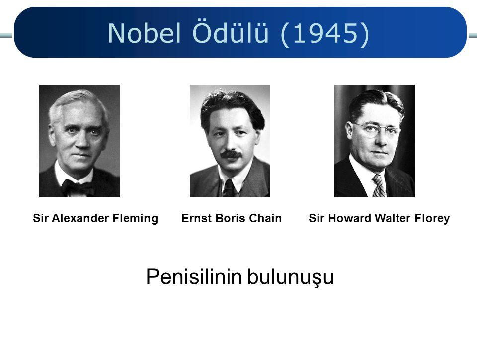 Nobel Ödülü (1945) Penisilinin bulunuşu