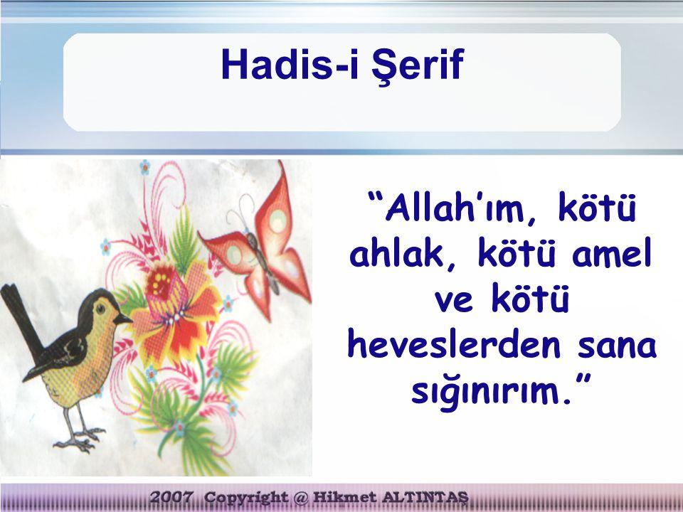 Allah'ım, kötü ahlak, kötü amel ve kötü heveslerden sana sığınırım.