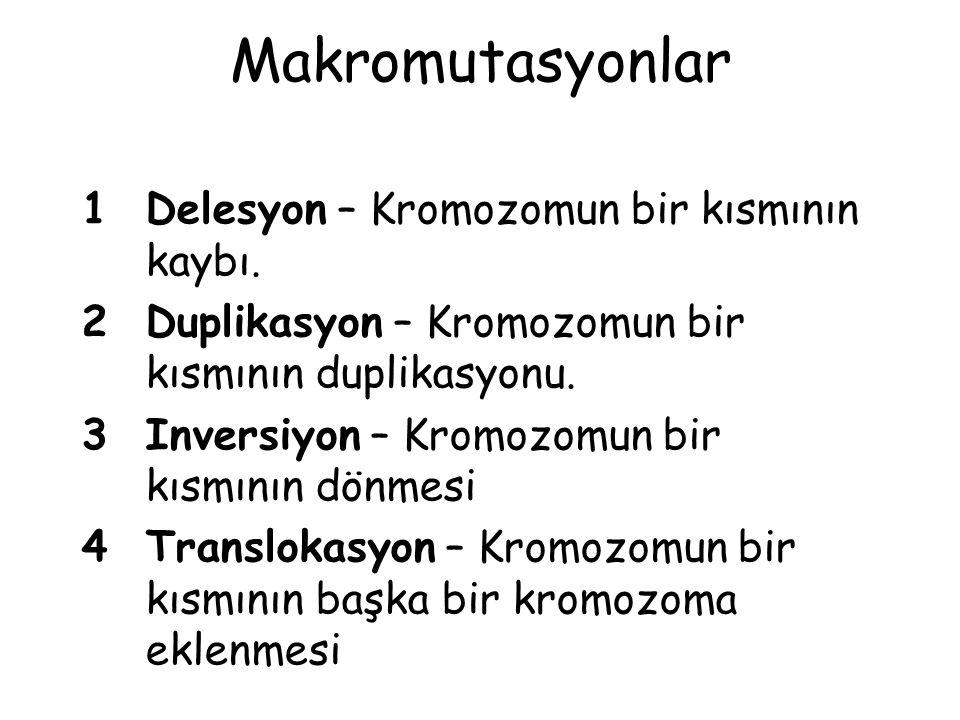 Makromutasyonlar 1 Delesyon – Kromozomun bir kısmının kaybı.