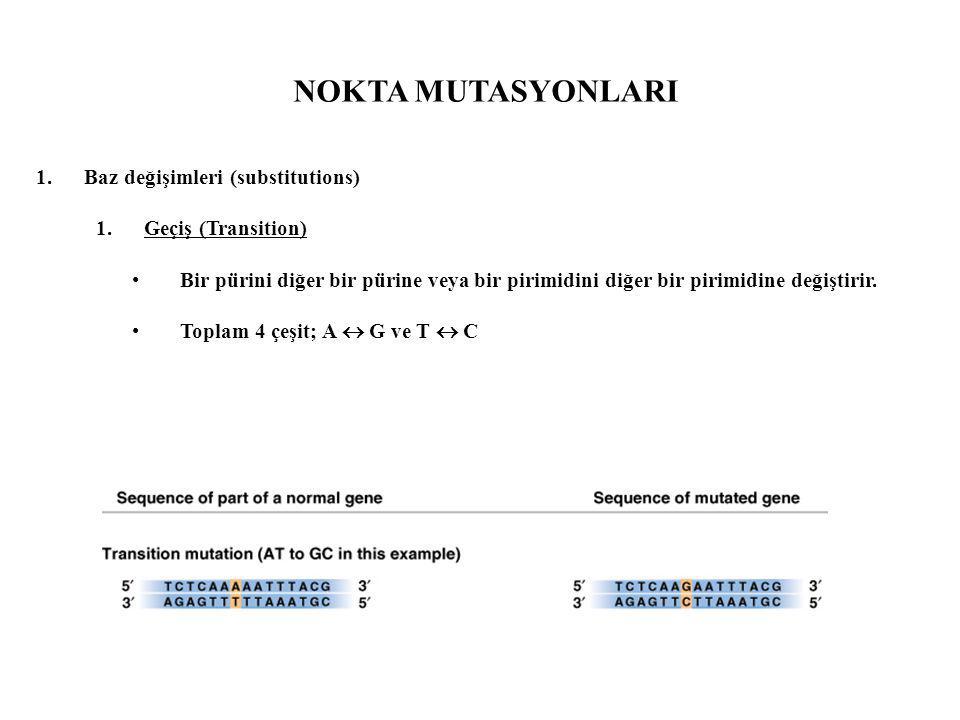NOKTA MUTASYONLARI Baz değişimleri (substitutions) Geçiş (Transition)