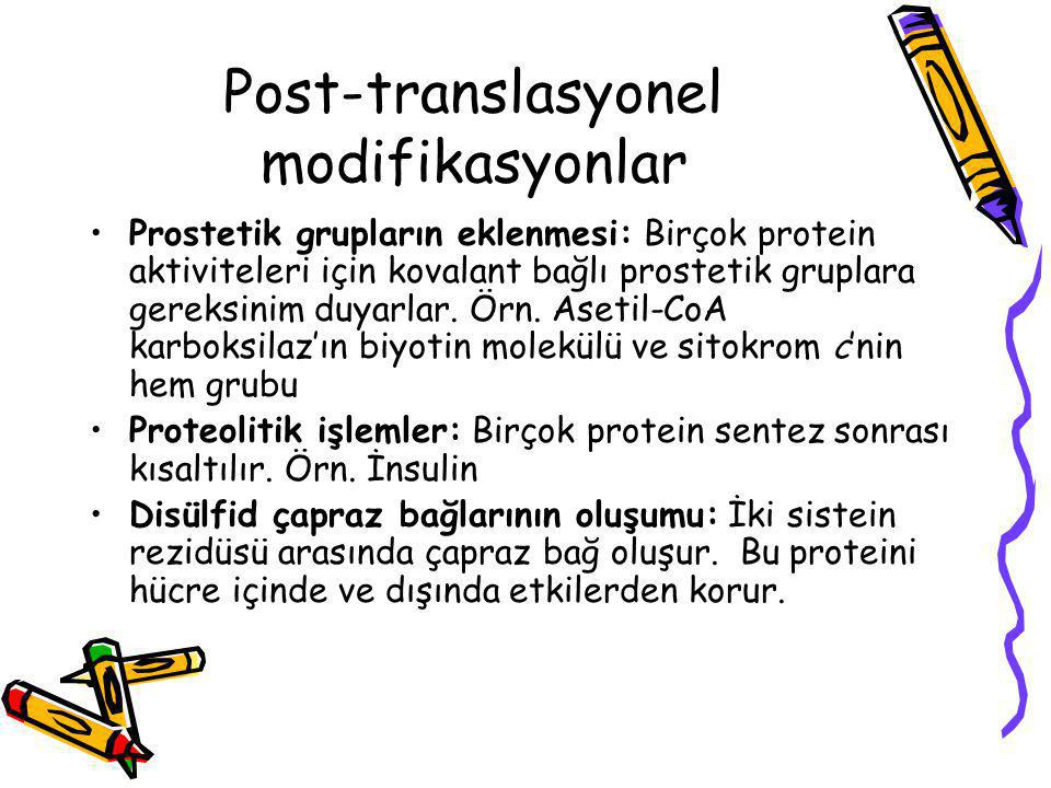 Post-translasyonel modifikasyonlar
