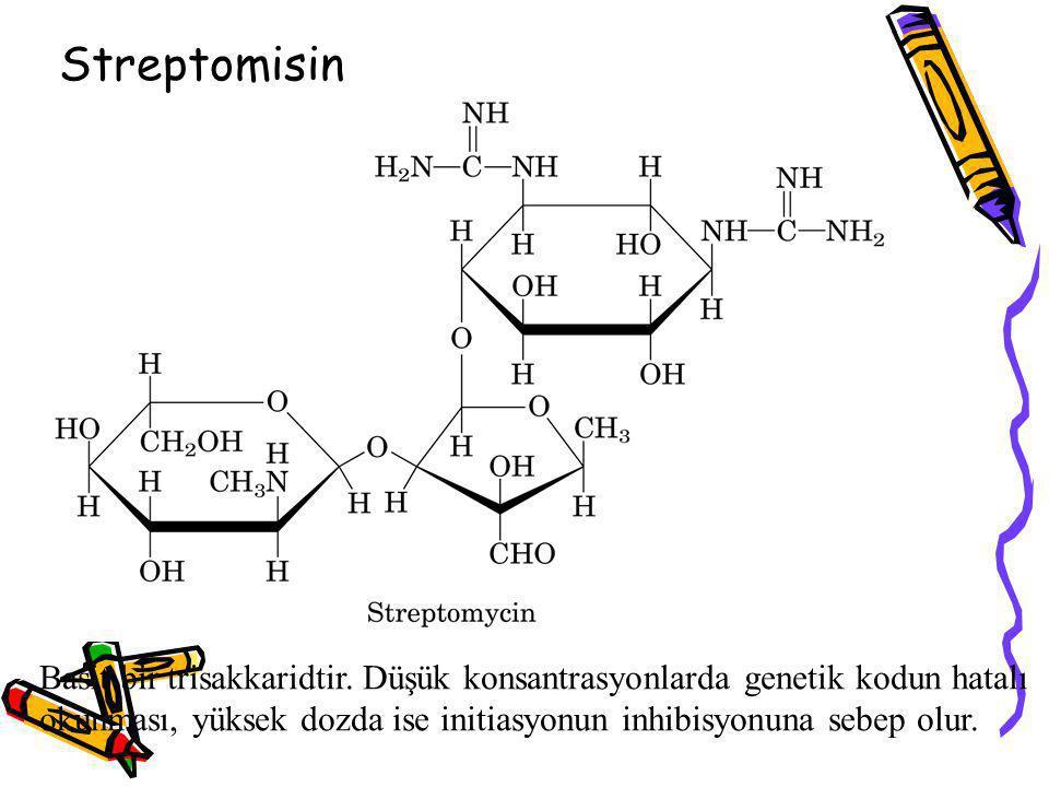 Streptomisin Basit bir trisakkaridtir. Düşük konsantrasyonlarda genetik kodun hatalı.