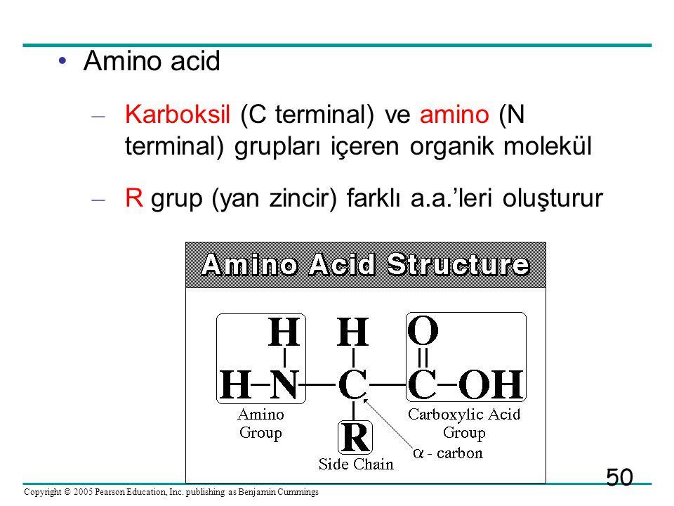 Amino acid Karboksil (C terminal) ve amino (N terminal) grupları içeren organik molekül.