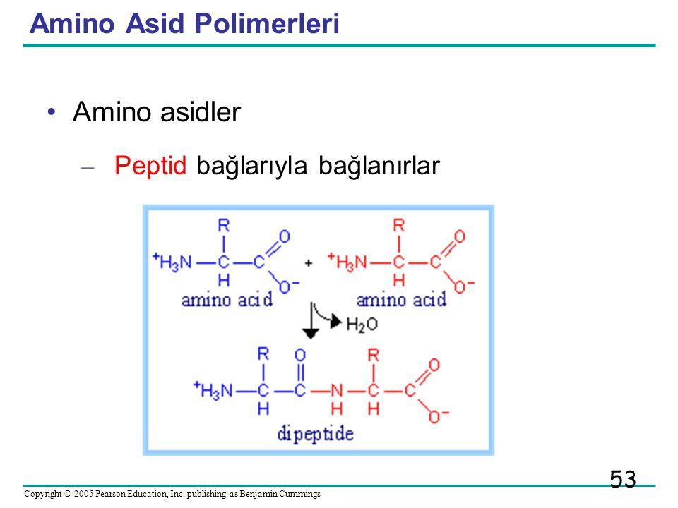 Amino Asid Polimerleri