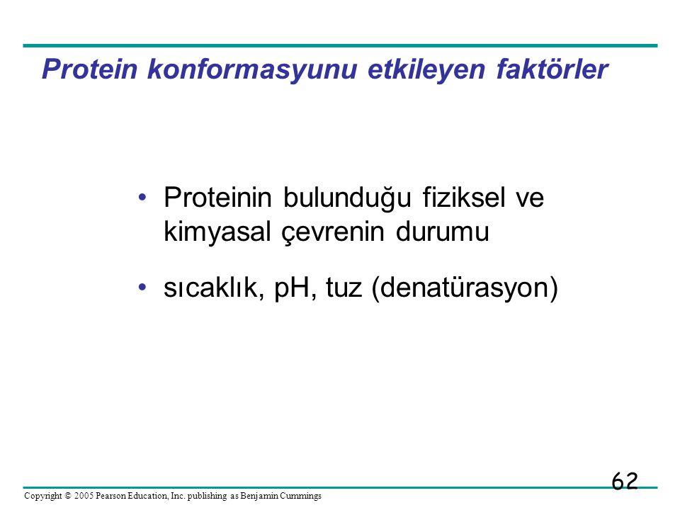 Protein konformasyunu etkileyen faktörler