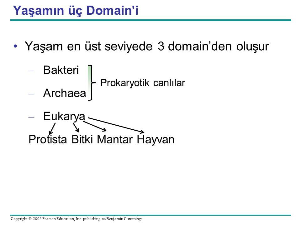 Yaşam en üst seviyede 3 domain'den oluşur