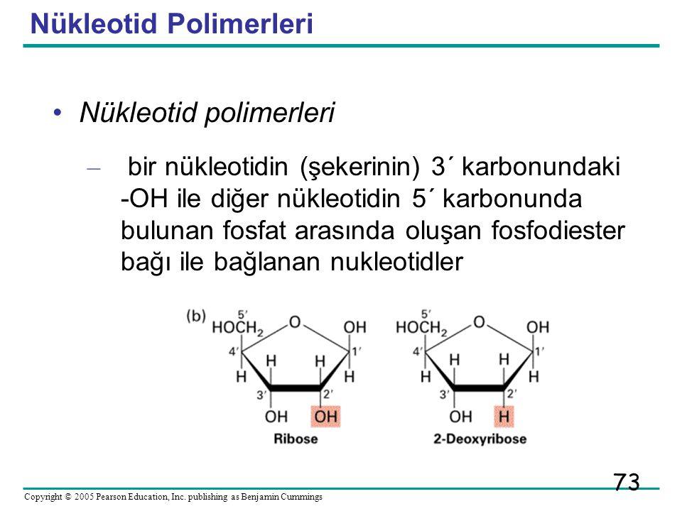 Nükleotid Polimerleri