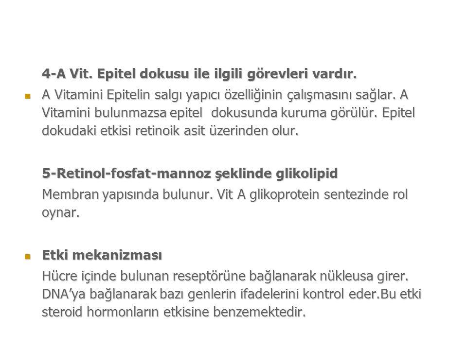 4-A Vit. Epitel dokusu ile ilgili görevleri vardır.