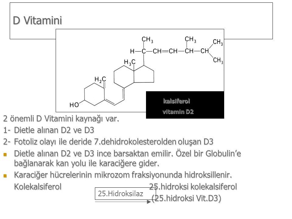 D Vitamini kalsiferol 2 önemli D Vitamini kaynağı var.