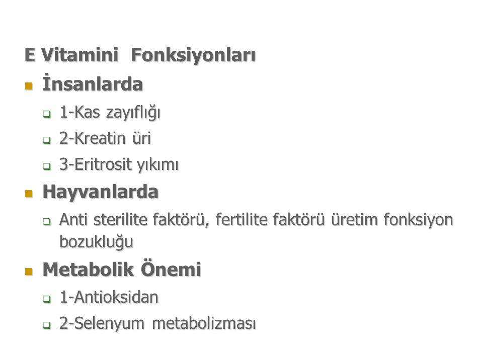 E Vitamini Fonksiyonları İnsanlarda