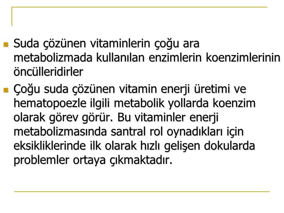Suda çözünen vitaminlerin çoğu ara metabolizmada kullanılan enzimlerin koenzimlerinin öncülleridirler
